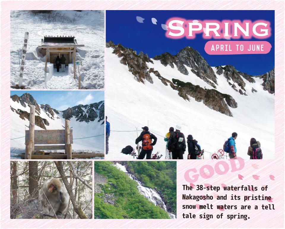 Cirque_spring